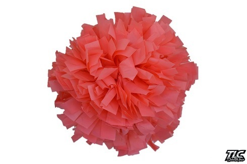 Coral Pink Plastic Cheerleading Pom Pom