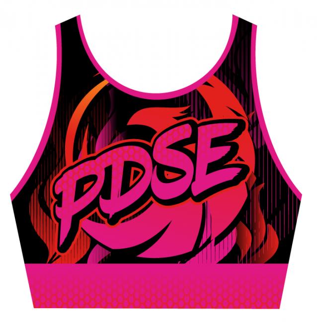 PDSE Cheerleading & Dance